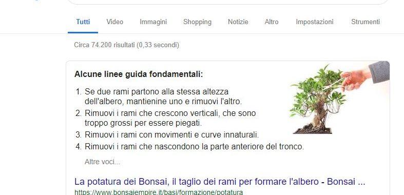 uno snippet di ricerca google
