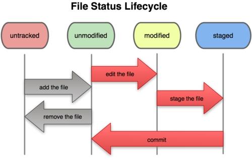 ciclo di vita dei file in Git